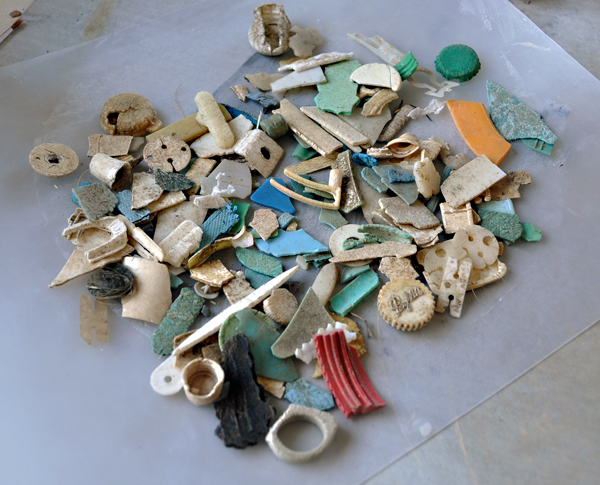 plastic-found-in-the-stomachs-of-3-Flesh-footed-shearwaters.
