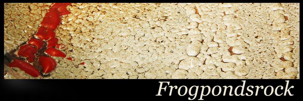 Frogpondsrock… header image