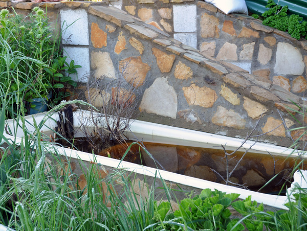 Simple frog ponds for your back yard.